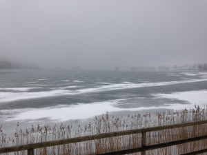 Der Seehamer See im Nebel